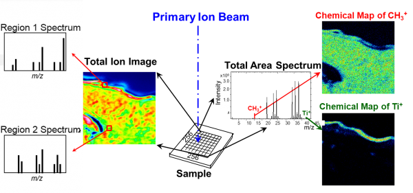 retrospective analysis allows to show images of ions of interest and spectra of areas of interest